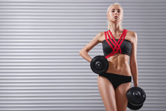 Beautiful fit young sportswoman exercising with dumbbells Stock Image