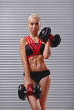 Beautiful fit young sportswoman exercising with dumbbells Royalty Free Stock Photo