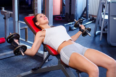Beautiful fitness girl lifting weights in the gym Royalty Free Stock Images