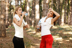Beautiful fitness woman drinking water from plastic bottles Stock Photography