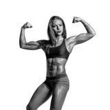 Beautiful fitness woman posing on studio background Stock Image