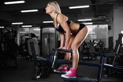 Beautiful fitness woman trains in the gym. Fitness strength training workout bodybuilding concept background - muscular bodybuilder sexy woman doing exercises in Royalty Free Stock Photo