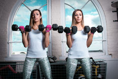 Beautiful fitness women doing biceps exercises in the gym. Brunette fitness women doing biceps exercises in the gym using dumbbells Royalty Free Stock Image