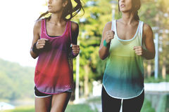 Beautiful fitness women Stock Photos