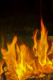 Beautiful flame of fire Stock Image