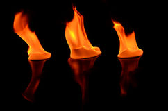 Beautiful flame reflected in the foreground Stock Images