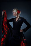 Beautiful flamenco dancer Stock Image