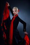 Beautiful flamenco dancer Stock Photography