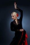 Beautiful flamenco dancer Stock Photos