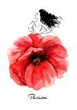 Beautiful flamenco dancer. Vector illustration Stock Image