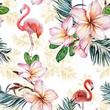 Beautiful flamingo and plumeria flowers on white background. Exotic tropical seamless pattern. Watecolor painting. royalty free illustration
