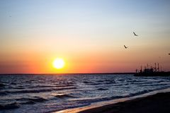 Beautiful flight of birds over the sea wave, in the setting sun, waves close up at sunset with a bright halo. Sunset at sea stock photos