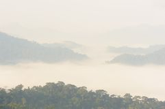 Beautiful floating fog in rain forest,Thailand. Royalty Free Stock Image