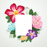 Beautiful flora with white paper card isolated Stock Image