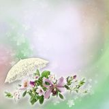 Beautiful floral abstract background Stock Photo