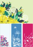 Beautiful floral abstract background in soft green. Yellow and pink- Great for textures and backgrounds for your projects Royalty Free Stock Images