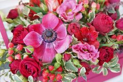 Beautiful floral arrangement of red, pink and burgundy flowers in a pink wooden box royalty free stock photos