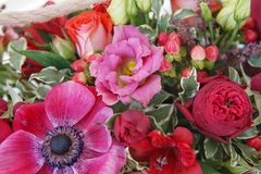 Beautiful floral arrangement of red, pink and burgundy flowers in a pink wooden box stock photos