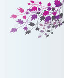 Beautiful floral background. Royalty Free Stock Image