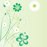 Beautiful floral background Stock Photos