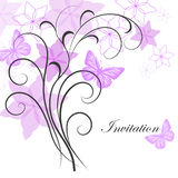 Beautiful floral background. Royalty Free Stock Photography