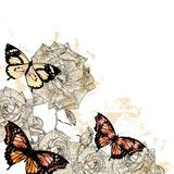 Beautiful floral background with butterflies and roses Royalty Free Stock Images