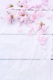 Beautiful floral background with Spring flowers. Beautiful, floral background with Spring flowers Stock Photo