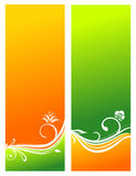 Beautiful floral backgrounds. Vector illustration Royalty Free Stock Image