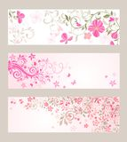 Beautiful floral banners. Collection of beautiful floral banners Royalty Free Stock Photography