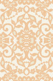 Beautiful floral beige lace. Vector illustration Stock Photography