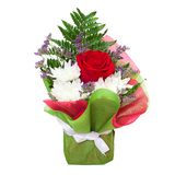 Beautiful floral bouquet Royalty Free Stock Photos