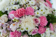 Beautiful floral bouquet. Of different flowers for bride in wedding party, Pink and white roses and daisies as a background Royalty Free Stock Photos