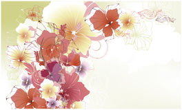 Beautiful floral card Stock Images