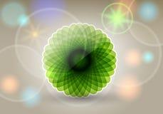 Beautiful floral card Royalty Free Stock Photos