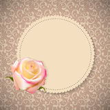 Beautiful Floral Cards with  Realistic Rose Stock Image