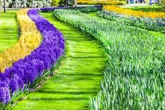 Beautiful floral decoration in Keukenhof park in Holland Royalty Free Stock Image