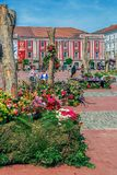 Beautiful floral decoration in Liberty Square, Timisoara, Romani Royalty Free Stock Photography
