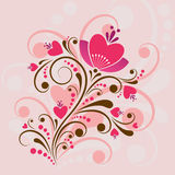 Beautiful floral design Royalty Free Stock Images