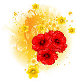 Beautiful floral design. Beautiful red poppy and daffodil floral design Royalty Free Stock Photo