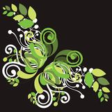 Beautiful floral design elements Royalty Free Stock Images