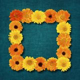Beautiful Floral Frame Royalty Free Stock Photo
