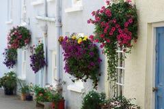 Beautiful floral hanging baskets Royalty Free Stock Photos