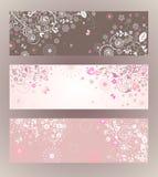 Beautiful floral horizontal banners Stock Photos