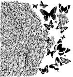 black and white amazing floral illustration with butterflies Stock Photos