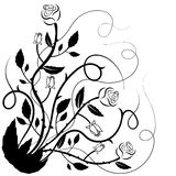 Beautiful floral illustration with swirls Stock Photography