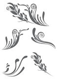 Beautiful floral ornament elements Royalty Free Stock Photo