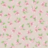 Beautiful floral pattern Stock Image