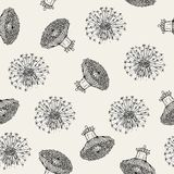 Beautiful floral seamless pattern with dandelion flower Stock Images