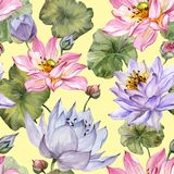 Beautiful floral seamless pattern. Large pink and purple lotus flowers with leaves on yellow background. Hand drawn illustration. royalty free illustration