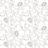 Beautiful floral seamless pattern. Seamless pattern with peony flowers, decorative floral illustration Stock Image